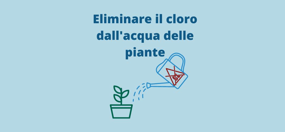 Eliminare cloro acqua piante: Il cloro è tossico per le piante?