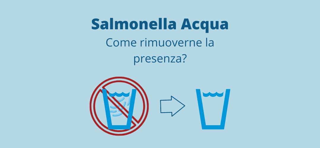 Salmonella acqua: come rimuoverne la presenza?