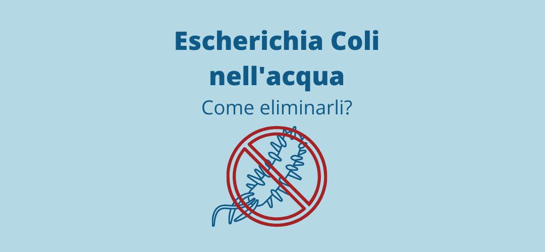 Escherichia coli nell acqua: Come eliminarli?